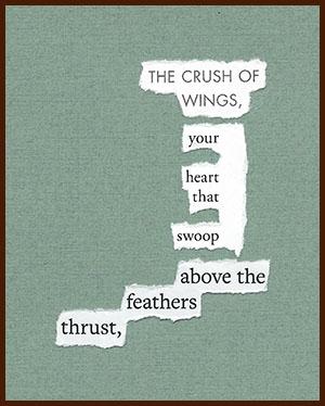 found poem © j.i. kleinberg ~ THE CRUSH