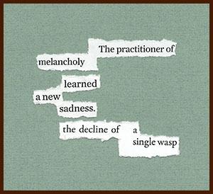 found poem © j.i. kleinberg ~ The practitioner