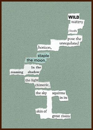 found poem © j.i. kleinberg ~ WILD