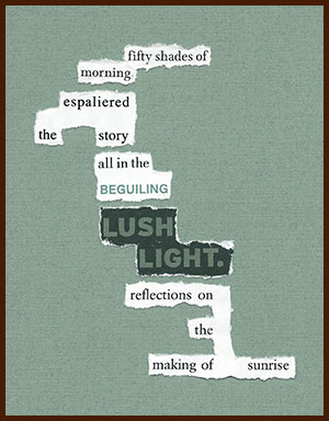 found poem © j.i. kleinberg ~ fifty shades