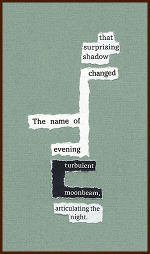 found poem © j.i. kleinberg ~ that surprising