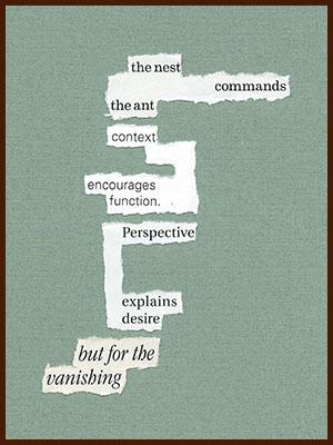 found poem © j.i. kleinberg ~ the nest
