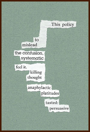 found poem © j.i. kleinberg ~ This policy
