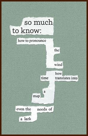 found poem © j.i. kleinberg ~ so much