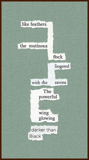 found poem © j.i. kleinberg ~ like feathers