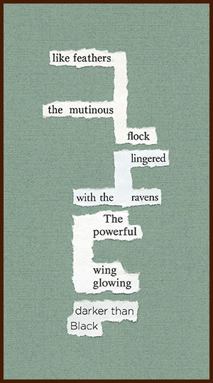 found poem © j.i. kleinberg ~ like feathers