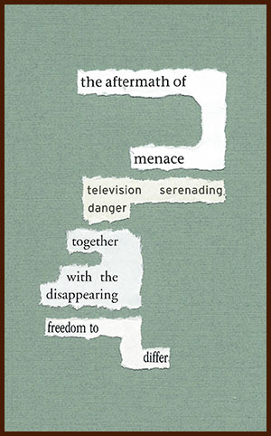 found poem © j.i. kleinberg ~ the aftermath