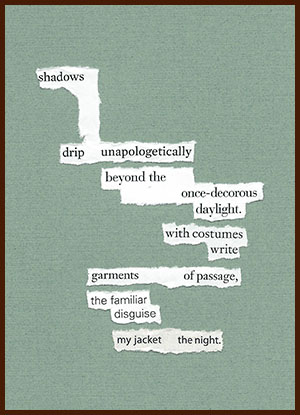 found poem © j.i. kleinberg ~ shadows