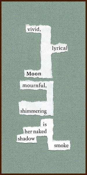 found poem © j.i. kleinberg ~ vivid