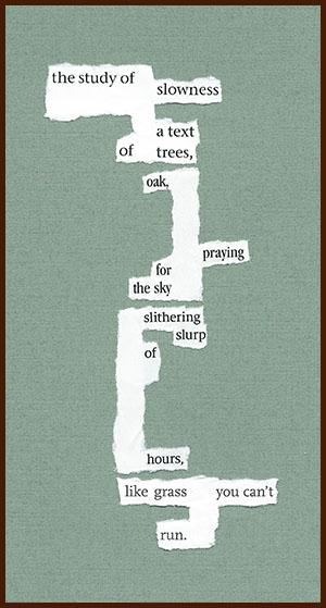 found poem © j.i. kleinberg ~ The study