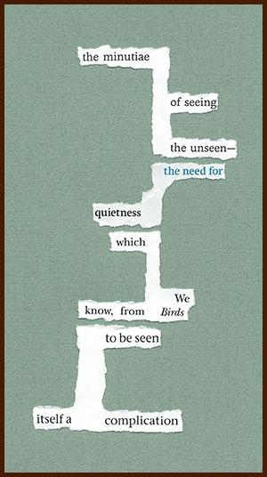 found poem © j.i. kleinberg ~ the minutiae