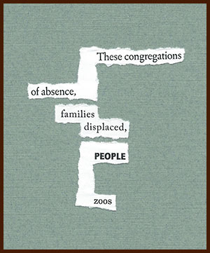 found poem © j.i. kleinberg ~ These congregations