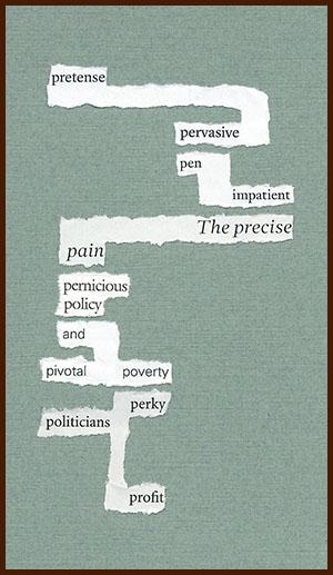 found poem © j.i. kleinberg ~ pretense