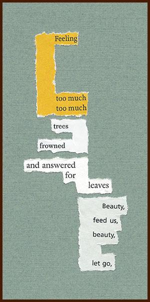 found poem © j.i. kleinberg ~ Feeling