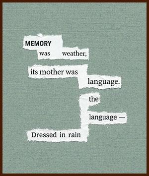 found poem © j.i. kleinberg ~ MEMORY