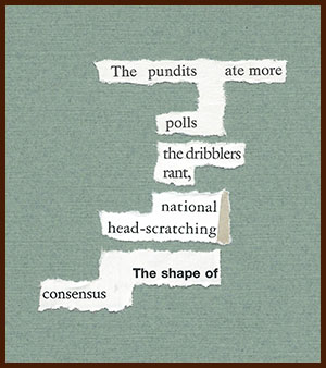 found poem © j.i. kleinberg ~ The pundits