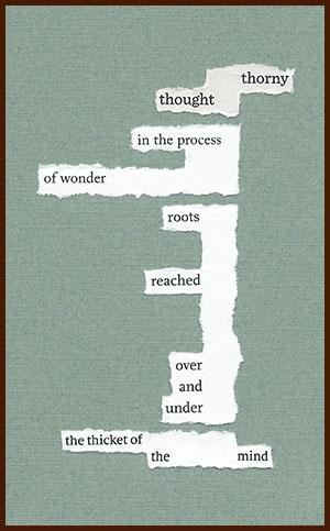 found poem © j.i. kleinberg ~ thorny
