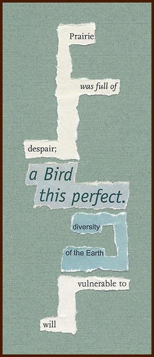 found poem © j.i. kleinberg ~ Prairie