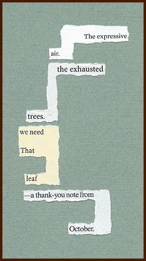 found poem © j.i. kleinberg ~ The expressive