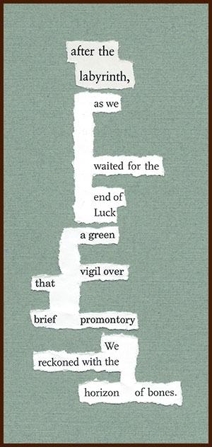 found poem © j.i. kleinberg ~ after