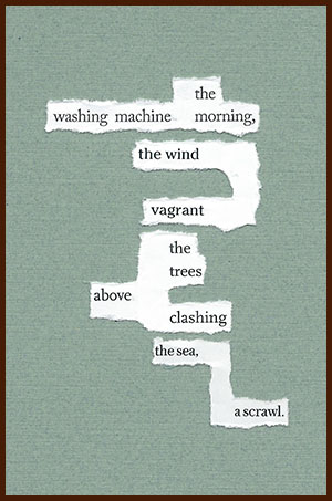 found poem © j.i. kleinberg ~ the washing machine