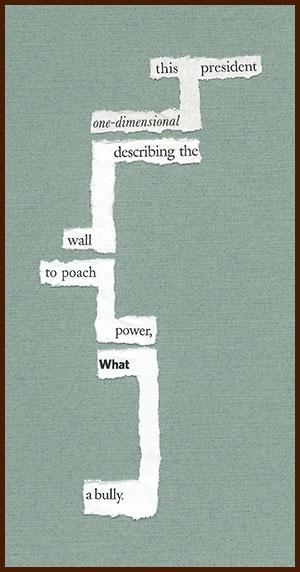 found poem © j.i. kleinberg ~ this president