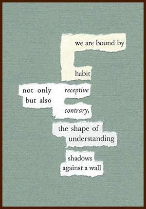 found poem © j.i. kleinberg ~ we are bound