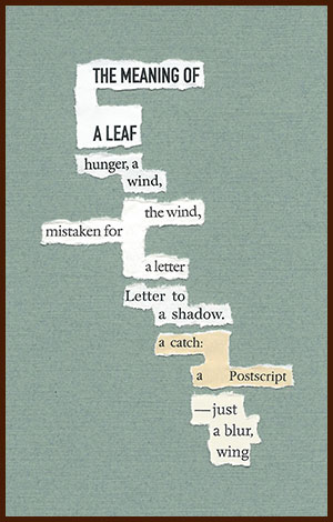 found poem © j.i. kleinberg ~ THE MEANING