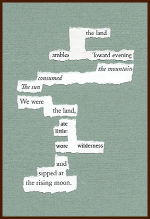 found poem © j.i. kleinberg ~ the land