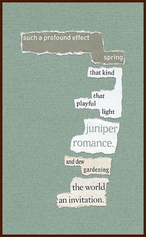 found poem © j.i. kleinberg ~ such a profound effect
